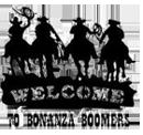 :welcometoboomers